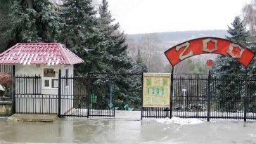 В Кишинёвский зоопарк приехали новые жильцы