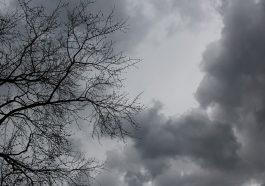 На Приднестровье обрушился штормовой ветер