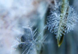 На Приднестровье и Молдову надвигаются сибирские морозы