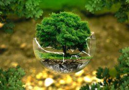 Земля лишится кислорода