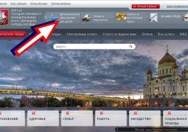 В России мошенники освоили портал госуслуг