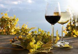 Грузинское вино пользуется спросом в России