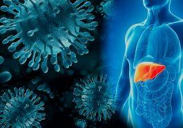 В Приднестровье сформируют госреестр пациентов с вирусными гепатитами