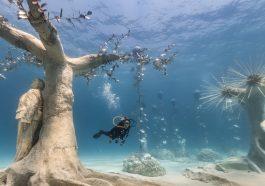 Возле побережья Кипра открылся подводный музей