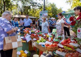 В Приднестровье продолжит действовать проект «Покупай Приднестровское!»