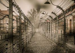 Президент Германии почтит память жертв Холокоста на Украине